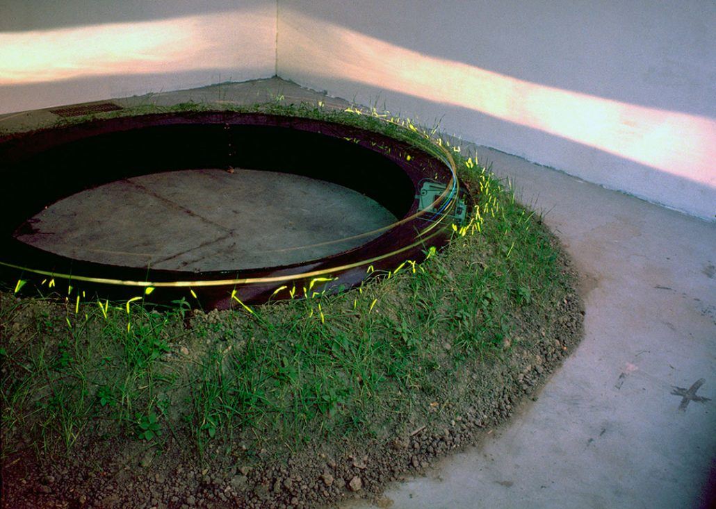 Installation to relativity